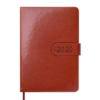 Ежедневник А5 датированный SOLAR 336л коричневый 2020г BM.2125-25