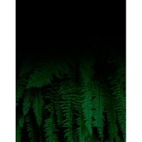 Ежедневник А5 датированный THE JUNGLE 336л зеленый 2020г BM.2159-04
