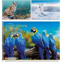 Альбом для рисования А4 30л PB-SC-030-287
