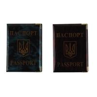Обложка на паспорт глянец  9-488 (23994)