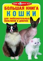 Большая книга. Кошки рус Бао 270729