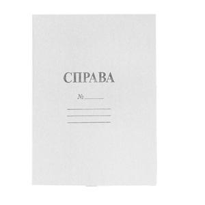 Папка картонная без механизма А4 0,35мм 100500;100502
