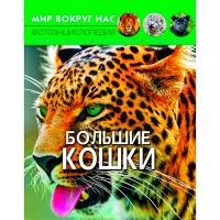 Книга Мир вокруг нас. Большие кошки рус  9543