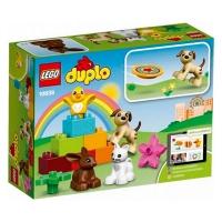 Конструктор LEGO Домашнии любимцы 10838