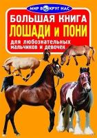 Большая книга. Лошади и пони  рус 352005 БАО