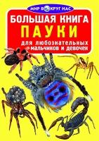 Большая книга. Пауки БАО рус 352227
