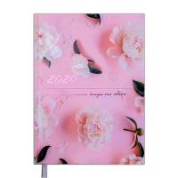 Ежедневник А5 датированный SPOLETO 336л розовый 2020г BM.2168-10