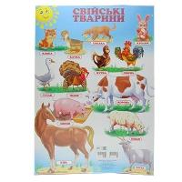 Плакат А2 Свійські тварини украинская 94783   Кредо