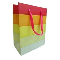 Пакет подарочный 23*18 646S 52972