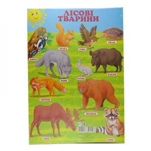 Плакат А2 Лісові тварини  украинская 94785   Кредо 90326