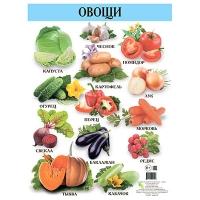 Плакат А2 Овощи  русский 96443   Кредо
