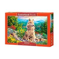 Пазлы Castorland 1000 эл С-104420