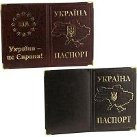 Обложка на паспорт карта евро, карта металл