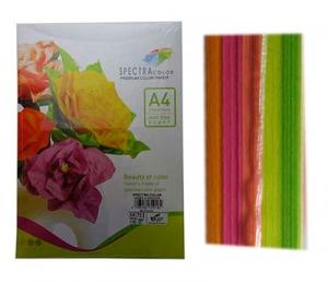 Бумага цветная А4 100л неон Sinar Spectra 75 г/м2  набор 184